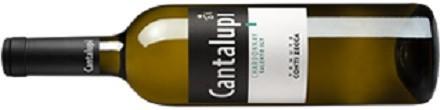 Conti Zecca Cantalupi Chardonnay Salento IGT-1749