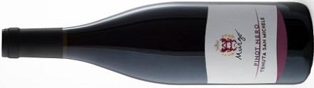 Pinot Nero Tenuta San Michele Murgo