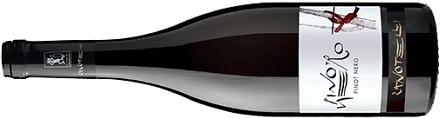 Pinot Nero Trentino DOC Zanotelli