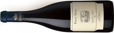 Pinot Nero Umbria IGT Castello della Sala - Antinori