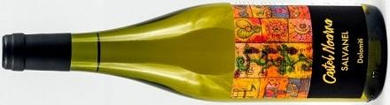 Salvanel Chardonnay Vigneti delle Dolomiti IGT Castel Noarna